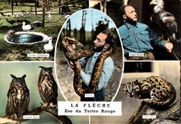 CPSM - ZOO Du TERTRE ROUGE - LA FLECHE - Multivues - Lot De 2 Vues - Other
