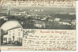 Province Du Luxembourg Arlon Souvenir De Sterpenich Maison Schmit Limpach 1906 - Arlon