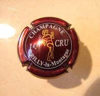 Cap. 23. Capsule De Champagne Rilly-la-Montagne 1er Cru - Rilly La Montagne