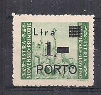 OCCUPAZIONE JUGOSLAVIA 1946 ISTRIA E LITORALE SLOVENO SEGNATASSE SASS.8 MLH XF - Occ. Yougoslave: Littoral Slovène