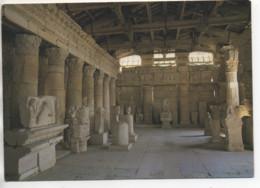 CP ( Saintes - L°Intérieur Du Musée Archéologique ) - Saintes