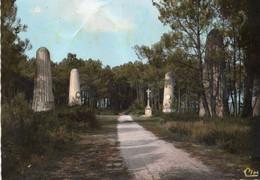 ~~ Riec Sur Belon - Le Bois De Pins - Les Menhirs - Otros Municipios