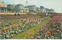 CPM Sunken Gardens Brighton Rw 793 - Brighton