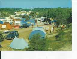 ILE DE RE   Le Camping Municipal - Ile De Ré