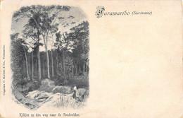 SURINAM  -  PARAMARIBO - KIJKJES OP DEN WEG NAAR DE GOUDVELDEN - Surinam