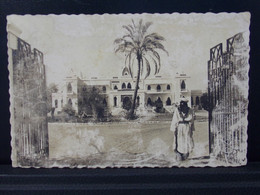 133 AFRIQUE . NIAMEY . LE PALAIS . 1960 - Níger