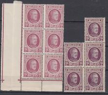 BELGIË - OBP - 1922 - Nr 195 Nuance (Blok/Bloc 6+5) - MNH** - 1922-1927 Houyoux