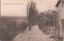 CPA - Bagneux - L'Ancien Bois De Bagneux - Bagneux