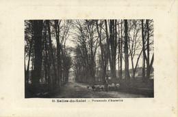 Saliès Du Salat Promenade D'Austerlitz Berger Moutons   RV Edition Cazeneuve - Salies-du-Salat