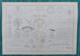 Ancienne Feuille De Cosmographie Tableau Des Systèmes Du Monde - Par Drioux Et Leroy - Other Plans