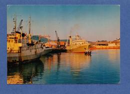 76 - FECAMP : Les Chalutiers Au Port De Terre Neuvas En 1979 - Fécamp
