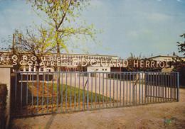 VIGNEUX - Les écoles E. Herriot - Vigneux Sur Seine