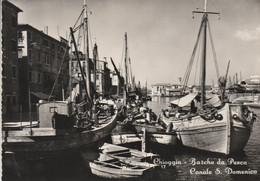 CHIOGGIA - BARCHE DA PESCA - CANALE S. DOMENICO......R9 - Chioggia
