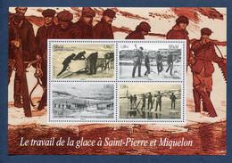 ⭐ Saint Pierre Et Miquelon - YT Bloc N° 13 ** - Neuf Sans Charnière - 2008 ⭐ - Blocks & Sheetlets