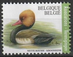 Krooneend  Verenigingen - 1985-.. Birds (Buzin)