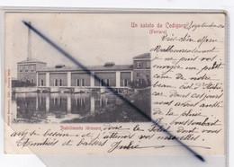 Italie - Un Saluto Da Codigoro (Ferrara) Stabilimento Jdrouoro (carte Précurseur De 1901) - Ferrara