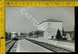 Mantova Roverbella Stazione Ferroviaria (fotografia, Piccolo Taglio, Spelato Dietro) - Mantova