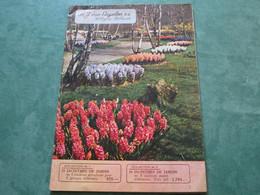 A.J. Van ENGELEN S.A. / Hillegom-Hollande / Automne 1956 (32 Pages Couleur) - 3. Bollen