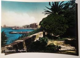 Civitavecchia - Panorama - Viaggiata 1958 - Civitavecchia