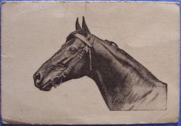 Calendrier Publicitaire 1936 PHARMACIE MONCLIN 30 Rue De La Marne à Châlons-sur-Marne 2 Scans Cheval, équitation, Hippis - Small : 1921-40