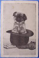 Calendrier Publicitaire 1936 PHARMACIE MONCLIN 30 Rue De La Marne à Châlons-sur-Marne TBE 2 Scans Chien - Small : 1921-40