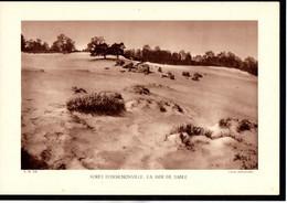 (60) OISE - Fiche - Année 1935 - Forêt D'Ermenonville La Mer De Sable Cliché Desffontaines - Géographie