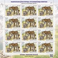 Europe CEPT 2021 M Russia Russland National Endangered Wildlife KB - 2020