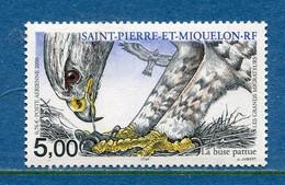 ⭐ Saint Pierre Et Miquelon - Poste Aérienne - YT PA N° 80 ** - Neuf Sans Charnière - 2000 ⭐ - Nuovi