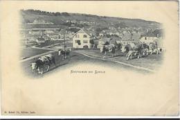 CPA SUISSE NEUCHATEL LE  LOCLE TROUPEAU DE VACHES N01 - NE Neuchâtel