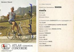 CARTE CYCLISME SALVATORE MACCALI SIGNEE TEAM ALFA LUM 2ª SERIE 1982 - Cycling