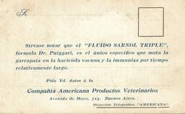 ARGENTINA - BUENOS AIRES, Tigre Hotel, COMPANIA AMERICANA - Argentina