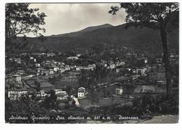 9242 - ARCIDOSSO GROSSETO PANORAMA 1954 - Other Cities