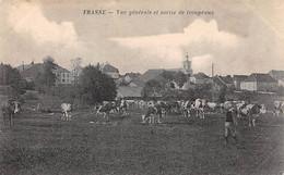 25 - N°73964 - FRASNE - Vue Générale Et Sortie De Troupeaux - Altri Comuni