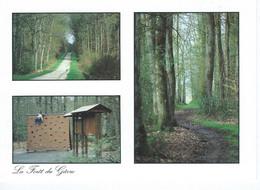 CPM - 44 - BLAIN - La Forêt Du Grave  - Photo Marc Chauvin - TBE - - Blain