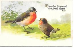 Bird, Vogel, Oiseau, Uccello, Robin, Pettirosso,  Bible Text, Bibeltext - Birds