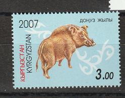 Kirghizistan. Kyrgyzstan  Sanglier.  Wild Boar - Otros