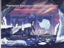Roumanie, 2009, L'anne Polaire Internationale, BF Oblitere - Usado
