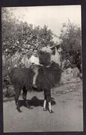 Photo Originale Postale Argentina Circa 1950 Garçon Chevauchant Un Lama A1RR2 LLAMA MIRANDO AL NIÑO TRES RARE - Anonymous Persons