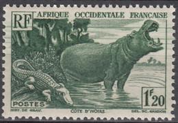 N° 31 - X X - ( C 1661 ) - Unused Stamps