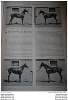 1902 LE SPORT UNIVERSEL ILLUSTRE - CROSS CONTRY DE PAU HUNT - CONCOURS HIPPIQUE DE LYON - YACTHING ET MARINE - Magazines - Before 1900