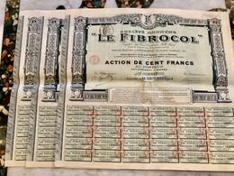S.A.   <  LE  FIBROCOL  >. Lot  De  3  Actions  De  100 Frs - Industry