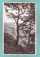 Small Postcard Of The Pier,Minehead,Somerset,England,Y145. - Minehead