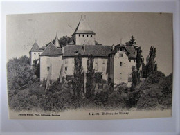 SUISSE - VAUD - BLONAY - Le Château - 1909 - VD Vaud