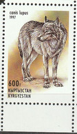 Kirghizistan. Kyrgyzstan  Loup. Wolf - Perros