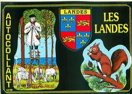 85 - Blason Adhesif Autocollant - Les Landes   AL 310 - Unclassified