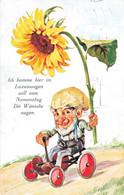 58352- Ich Komme Im Luxuswagen Zwerg Auto Sonnenblume - Autres