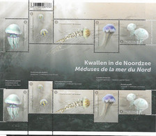Belg. 2021 - Méduses De La Mer Du Nord ** - Nuovi