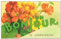 01 UN BONJOUR  DE  CONFRANCON   CPM  TBE  VR227 - Other Municipalities