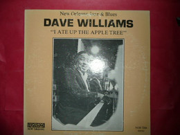 LP33 N°8062 - DAVE WILLIAMS - I ATE UP THE APPLE TREE - NOR 7204 - Jazz
