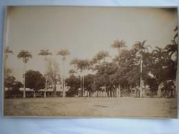 Photo 24/17  Av. 1900 Guadeloupe Sur Carton Place Du Champ  D,Arbourd - Ancianas (antes De 1900)